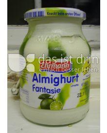 Produktabbildung: Ehrmann Almighurt Fantasie 500 ml