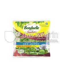 Produktabbildung: Bonduelle Salatino-Mix 100 g