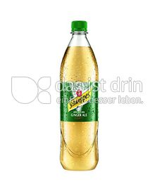 Produktabbildung: Schweppes Ginger Ale 1000 ml