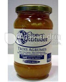 Produktabbildung: Saveurs Attitudes Frucht-Brotaufstrich 3 Zitrusfrüchte / Trois Agrumes 310 g