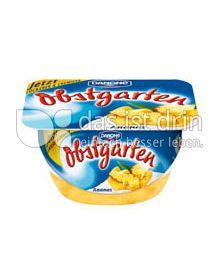 Produktabbildung: Danone Obstgarten Ananas 125 g