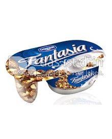 Produktabbildung: Danone Fantasia Schoko Knusper 106 g