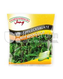 Produktabbildung: Gartenfrisch Jung Junge Pflücksalate mit Mangold 150 g